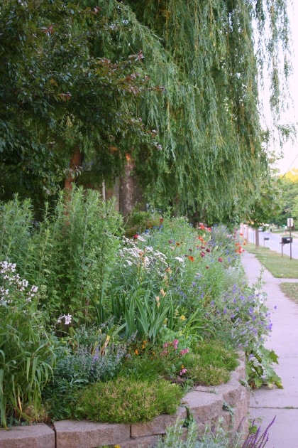 my favorite garden--retaining wall, willow, mixed plantings