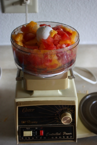 mango salsa in food processor