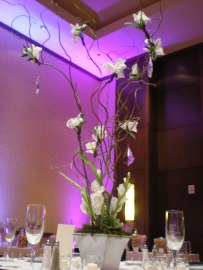 curly willow branches with white gladiolus blossoms and clear crystals