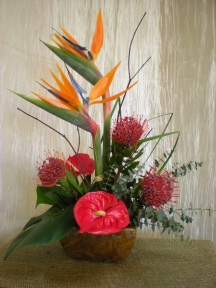 tall tropicals arrangement: birds of paradise, red anthurium, spiral eucalyptus, birch branches, pincushion protea
