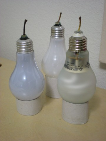 lightbulbs supported on sections of toilet paper roll