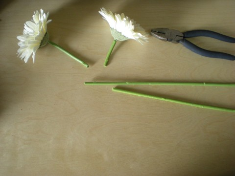 white Gerbera daisies severed from their stems with wire cutters