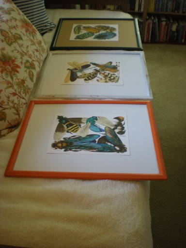 art framed and laid out to hang