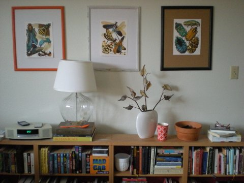 three framed insect pieces
