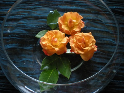 orange spray roses and leaves floating in a clear glass bowl on a teal table runner