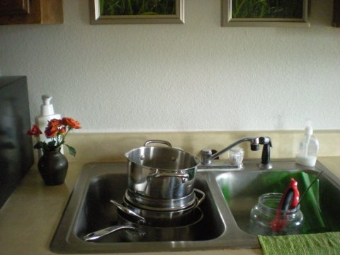 orange spray roses in earthen bud vase by the kitchen sink