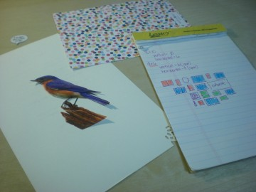 images for kitchen gallery wall: bluebird cutout and dotty stationery with gallery map