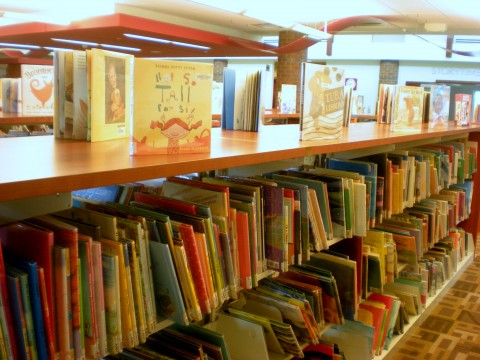 picture books displayed on top of shelves