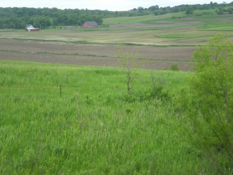 view of farmland, house, and barn